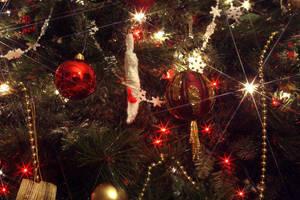 Christmas Cheer 3 by sleddog116
