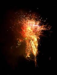 Fireworks 07042008 by BLUEamnesiac
