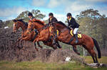Triple by EquusAustralia
