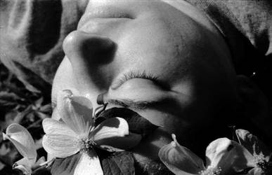 Crown of Petals by AngelaSasser-photos