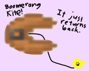 CTC 311: Boomerang Kite! by MeesterTweester