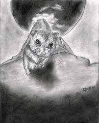 Um Hamster by SubLeLumiere