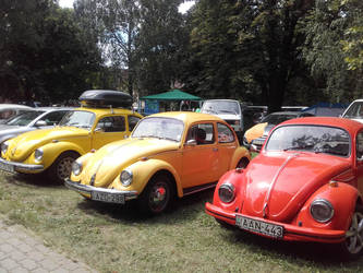 22. National Volkswagen BUG Meeting and Bus Party by EProg