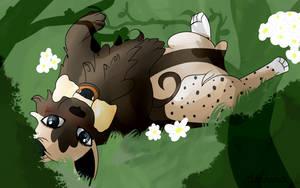 .: Woof Woof! :. CO. by Amanska