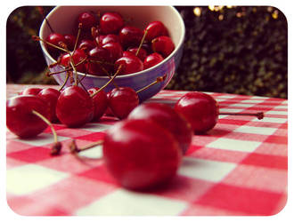 just another cherry picture by Atreja