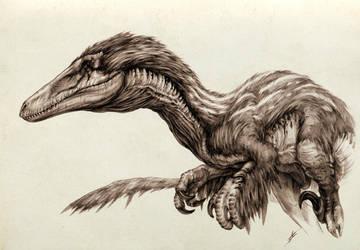 Austroraptor by AntarcticSpring