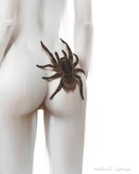Arachnophobia by AntarcticSpring