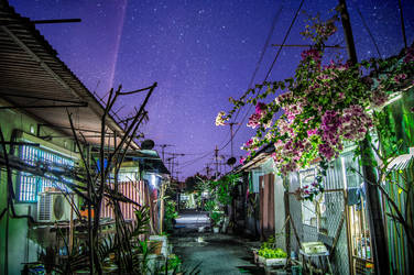 Backalley by YongL