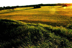 Muhu island. Estonia by Okeiko