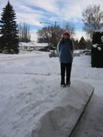 Wintertime by Taelesiy
