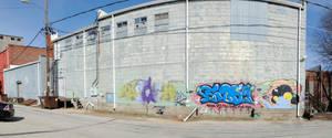 Graffiti by brandimillerart