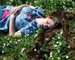 Field of Flowers by brandimillerart