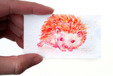 Tiny Watercolor Hedgehog Painting by brandimillerart