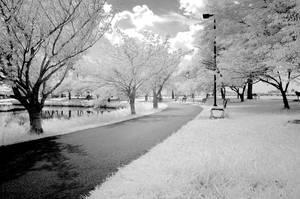 IR Landscape 1 by Sibunis