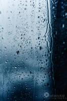 Rain Drops by AndreeaTrandafir