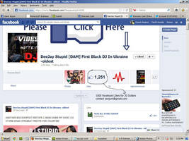 1000 FB Likes in 20 Dollars by zamir