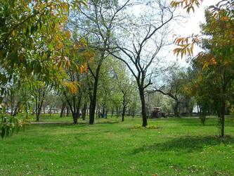 GREEN islamabad by zamir
