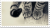 Cat Paws Stamp [f2u] by amber-kat