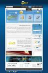 D3MI.com website design by ohmto
