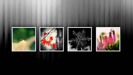 Seasons by Seathrewhaze