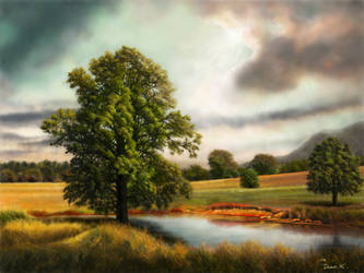 Trees With The Field by abyss1956