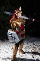Magic Armor Link cosplay by Rinkujutsu