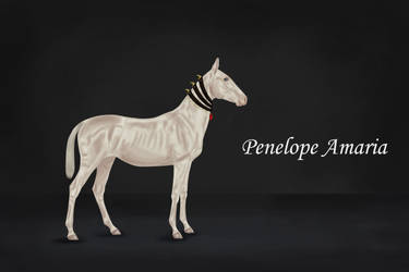 Penelope Amaria by PortysPrideRescue