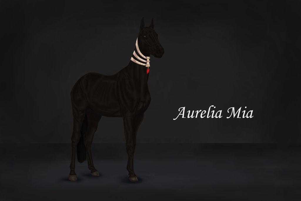 Aurelia Mia by PortysPrideRescue