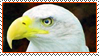 Stamp  -  Eagle by fmr0