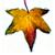 Icon - Autumn Leaf