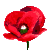 Icon - Poppy
