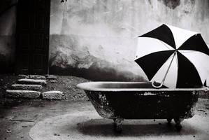 umbrella by morze