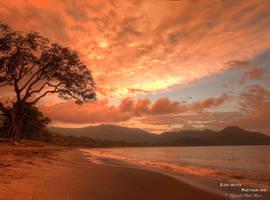 Guanacaste by Leucareth