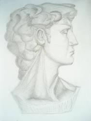 David Head by Qaiqab