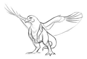 Red Tailed Hawk Dragon Sketch by MythsAndDreams