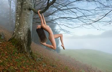 Descending Fog by fotodesign1