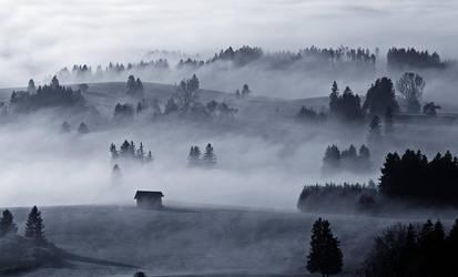 Bavarian Haze by mutrus