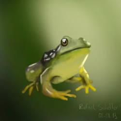 Frog by rafascheffer