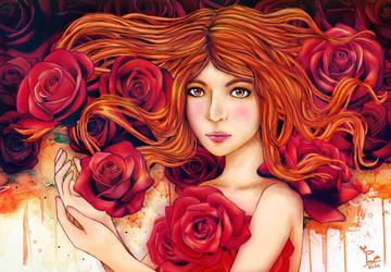 Red Rose by pavari