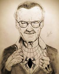 The Amazing Stan Lee by RafaelBisinoti