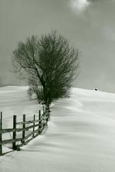 winter2 by eecaty