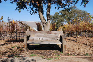 Bench-Stock by Thorvold-Stock