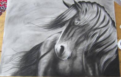 Horse by selena2016