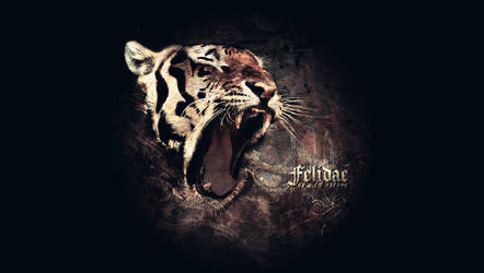 Felidae - ex wild natura - by drawcaliber