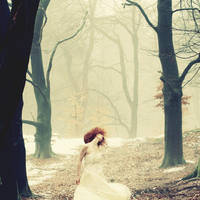 Fairyland by Lionique