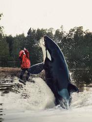 Orca by Lionique