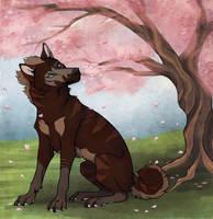 Falling Petals by Kalseah