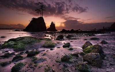 The Three Graces 2 by austinboothphoto