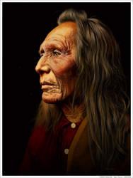 THREE EAGLES - Nez Perce by wendelin