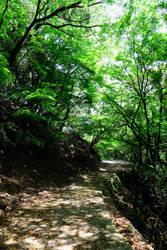 Sawayaka No Michi - The path of serenity by Fukuchan-Ryoko